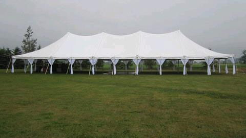 Where to find TENT, POLE 40  X 100   WHITE in Hayden