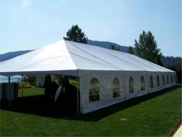 Where to find TENT, TWINTUBE 40  X100  WHITE in Hayden